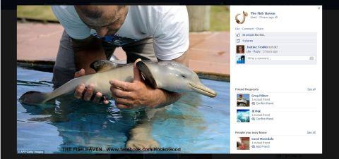 Facebook 7 August 2013