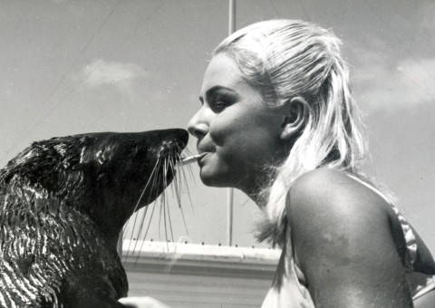 "Sammy the Seal - the subject of a book for children by Ben Cropp featured a girl called ""Kathy""."