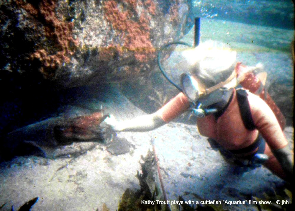 Tug-o-war with cuttlefish - from a 16mm film frame in Aquarius (1970)